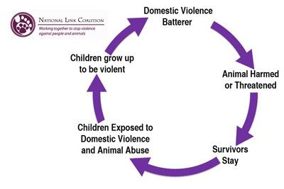 The effects of child abuse essay